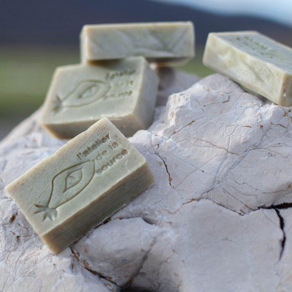 Le savon Ortie sur les rochers du Vercors
